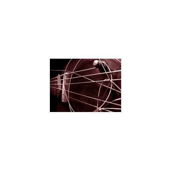 ŽICA WILLIAM D BISERNICA - E (3D) pletena III